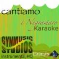 Cantiamo I Negramaro (Instrumental HQ) by Gynmusic Studios