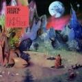 Island Universe EP by Feeding People