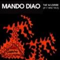 Wildfire (If It Was True) by Mando Diao