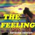 The Feeling (feat. Rachael) [Karaoke Version Originally Perfomed By Dj Fresh Ft. RaVaughn] by J&S Dj