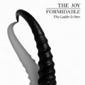 This Ladder Is Ours by The Joy Formidable