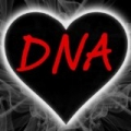 DNA (Little Mix Tribute) - Single by DNA British Pop Band