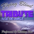 Flying Blind: Tribute to Ilse Delange by Midday Sun