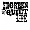 Big Green by Quiet Life