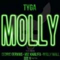 Molly [Explicit] by Tyga