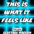 This Is What It Feels Like (Electric Prison's Remake Version of Armin van Buuren) by Electric Prison