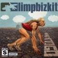 Ready To Go [Explicit] by Limp Bizkit
