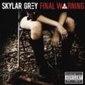 Final Warning [Explicit] by Skylar Grey