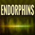 Endorphins (Originally Performed by Sub Focus and Alex Clare) by Quantum Hits