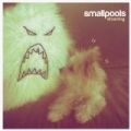 Dreaming by Smallpools
