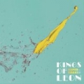 Supersoaker by Kings Of Leon