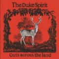Cuts Across The Land (Album Version) by The Duke Spirit