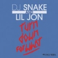 Turn Down for What by DJ Snake & Lil Jon