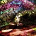 Hey Daydreamer by Sally Seltmann