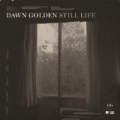 Still Life by Dawn Golden
