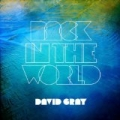 Back in The World by David Gray