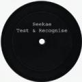 Test & Recognise by Seekae