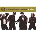 Shelter by The Brand New Heavies
