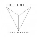 Come Unwound by The Bulls
