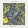 Feathering a Nest by Caddywhompus