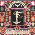 What A Terrible World, What A Beautiful World by The Decemberists