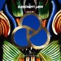 Rock This Road by Basement Jaxx feat. Shakka