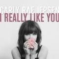 I Really Like You by Carly Rae Jepsen