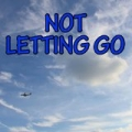 Not Letting Go - Tribute to Tinie Tempah and Jess Glynne by Shift And Groove