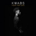 Fight For Love (Blonde Remix) [Radio Edit] by Kwabs
