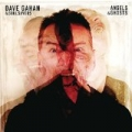 Angels & Ghosts by Dave Gahan & Soulsavers