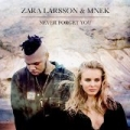 Never Forget You by Zara Larsson & MNEK