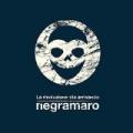 La rivoluzione sta arrivando by Negramaro
