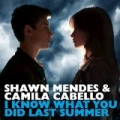 I Know What You Did Last Summer by Camila Cabello and Shawn Mendes