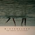 The Great Detachment by Wintersleep