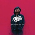 Never Better [Explicit] by Raleigh Ritchie