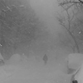 Trust Nobody [Explicit] by Cashmere Cat