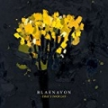 That's Your Lot by Blaenavon