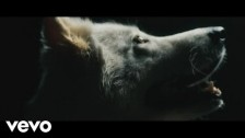 Thundamentals 'Wolves' music video