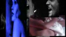 Def Leppard 'Have You Ever Needed Someone So Bad' music video