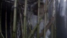 Olivia Newton-John 'Heart Attack' music video