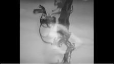 Trentemøller 'Candy Tongue' music video