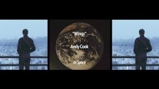 Andy Cook 'Wings' music video