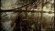David Bisbal 'Amar Es Lo Que Quiero' music video