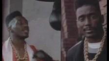 Big Daddy Kane 'Ain't No Half Steppin'' music video
