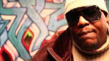 Redman 'Rockin' Wit Da Best' music video
