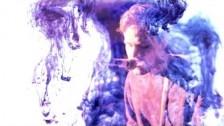 Cheatahs 'The Swan' music video