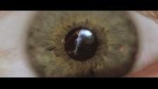Livingston 'Human' music video