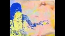 Fleetwood Mac 'Dragonfly' music video