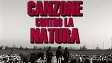 The Zen Circus 'Canzone contro la natura' music video