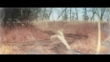 Tupelo Honey 'Not Alone' music video